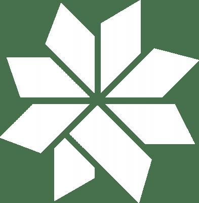Coolsculpting logo and Snowflake design